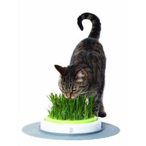 Catit Jardin d'herbe Senses Design