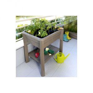 Eda Plastiques Vegetable - Carré potager avec serre en kit