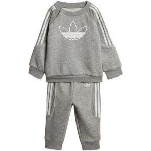 Adidas Ensembles de survêtement Ensemble Radkin Crewneck Sweatshirt Gris - Taille 12 / 18 mois,9 / 12 mois,2 / 3 ans,3 / 4 ans
