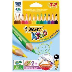 Bic 829735 - 12 Crayons de couleur Evolution assortis