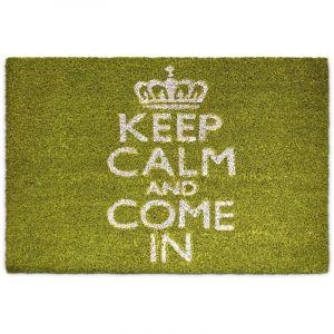 Relaxdays Paillasson %u201EKeep Calm and Come%u201C Tapis de sol en fibres de coco tapis de plancher accueil 40 x 60 cm antidérapant PVC caoutchouc essuie-pieds intérieur extérieur entrée natte, vert - 4052025177850