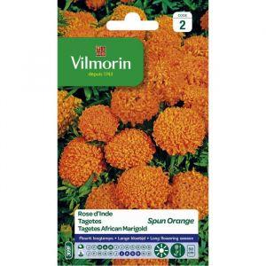 Vilmorin Graines de rose d'Inde spun orange - Spun orange - Plante vigoureuse à floraison abondante - Idéal pour des massifs fleuris