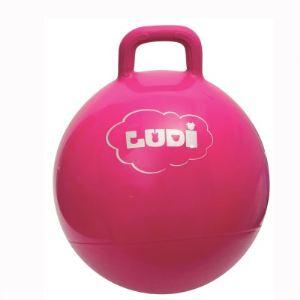 Ludi Ballon sauteur 45 cm