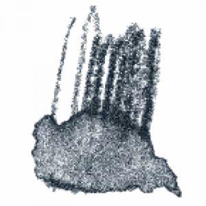 Image de Staedtler Crayon de couleur aquarellable Gris clair
