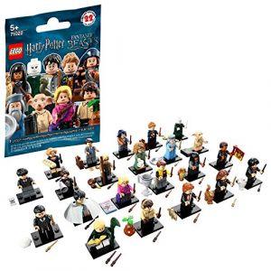 Lego Minifigures - Figurine Harry Potter et Les Animaux fantastiques 71022