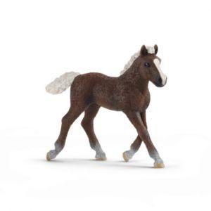 Schleich Figurine poulain Forêt-Noire 13899