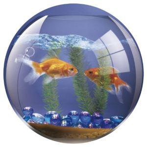 Poisson en plastique comparer 580 offres for Achat poisson rouge lyon