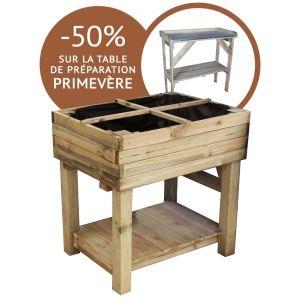 Cemonjardin Kit potager sur pied + table de préparation Primevère