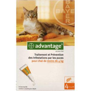 Bayer Advantage 40 pour chat - Traitement et prévention des infestations par les puces pour les chats de moins de 4 kg
