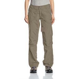 The North Face Horizon Tempest Plus Pantalon de Randonnée Femme Pache Grey FR S (Taille Fabricant 6)