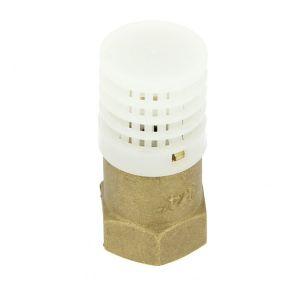 Socla Crépine laiton avec clapet pour hydrocarbure femelle 26-34