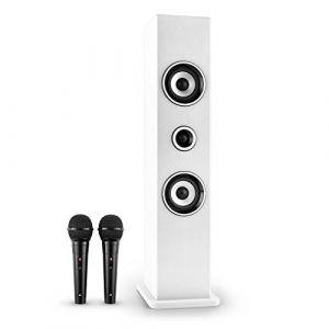 OneConcept Karaboom - Enceinte Bluetooth karaoké micros
