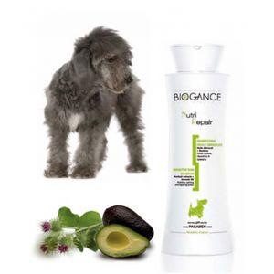 Biogance Shampooing réparateur pour chien