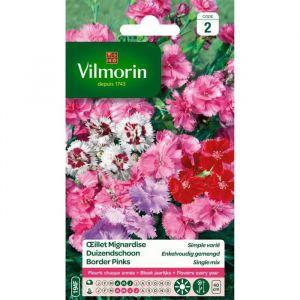 Vilmorin Oeillet Mignardise simple varie