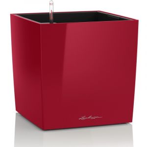 Lechuza Cube Premium 30 Rouge Scarlet - kit complet