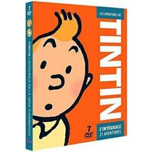 Tintin - L'intégrale de l'animation