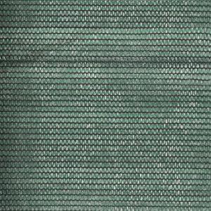 VidaXL Filet brise-vue PEHD 2 x 50 m Vert