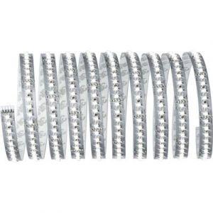 Paulmann Ruban LED (Base) avec connecteur mâle MaxLED 1000 70589 24 V 300 cm blanc lumière du jour 1 pc(s)