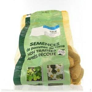 Image de Planteo Pommes de terre Pompadour calibre 25/32, 1,5 kg