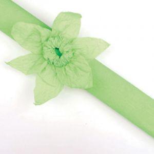 Rouleau papier crépon 10m Vert Anis