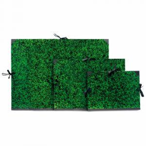 Clairefontaine 33600C - Carton à dessin Annonay vert à cordons, 80x120