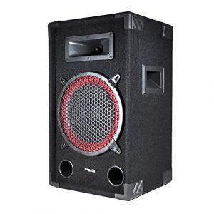 Ibiza Sound STAR10/250 - Enceinte passive sono DJ PA 10/25cm 250W 2 Voies BassReflex
