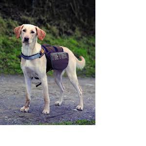 Trixie On the Trek - Sac à dos pour chiens