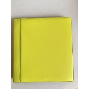 LG SVAR Album Photo PVC pour Polaroid Lemon