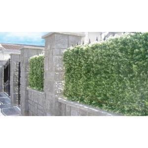 Euro Castor Green Haie de sapin clipsable en PVC 1 m²