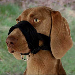 Trixie Muselière de dressage en nylon pour chien Taille 3 - 33 cm Tour de museau 30 à 36 cm