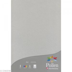 Pollen Etui 25F 210x297 argent 210g - Correspondance, Faire-part