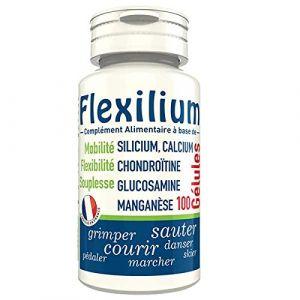 LT Labo Flexilium - 100 gélules