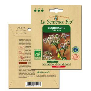 La Semence Bio Graines de Bourrache bio