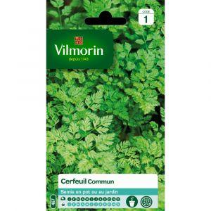 Vilmorin Cerfeuil commun 2.5 g