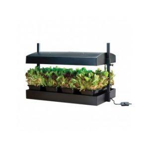 Mini jardin noir avec lampes 2x24W - Garland potager cuisine et salon