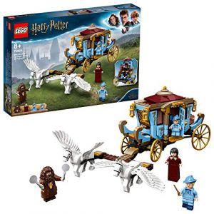 Lego Harry Potter - Le carrosse de Beauxbâtons : l'arrivée à Poudlard, Jeux de Construction, 75958, Multicolore