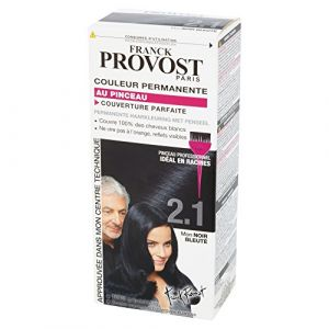 Franck Provost 2.1 Noir bleuté - Couleur permanente au pinceau