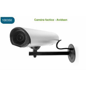 Avidsen 100350 - Caméra de surveillance factice