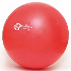 Sissel Ballon d'exercice mixte adulte Rouge 55 cm