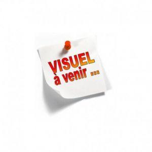 Millenium 2 La Fille Qui Revait D Unj Bidon D Essence Et ..... [Edizione: Francia] [Import italien] [DVD]
