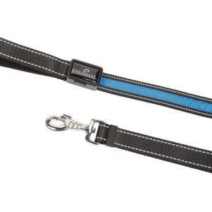 Num'Axes Laisse lumineuse à LED - Rechargeable par câble USB - Bleu
