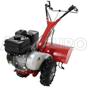 Eurosystems Motoculteur fraise arrière 6.5 CV, moteur OHV Briggs et Stratton 4 temps 205 cc - largeur 60 cm