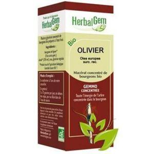 Herbalgem Olivier Macérat Concentré De Bourgeons Bio 50ml