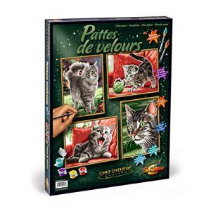 Schipper Peinture par numéro : Chats et chatons pattes de velours