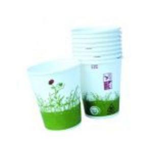 12 gobelets en carton et bioplastique (25 cl )