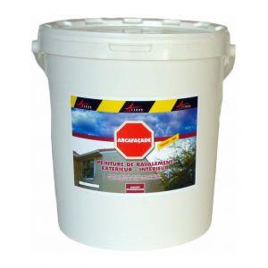 Arcane industries Peinture d'étanchéité pour façade 20kg - BLANC GRIS RAL 9002