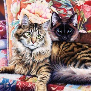 Master pieces Cat-Ology - Raja and Mulan