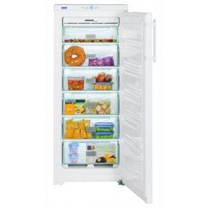 Liebherr GKN 230 - Congélateur armoire