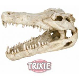 Trixie Crâne crocodile 14cm