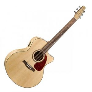 Seagull Guitars Performer CW HG Mini Jumbo